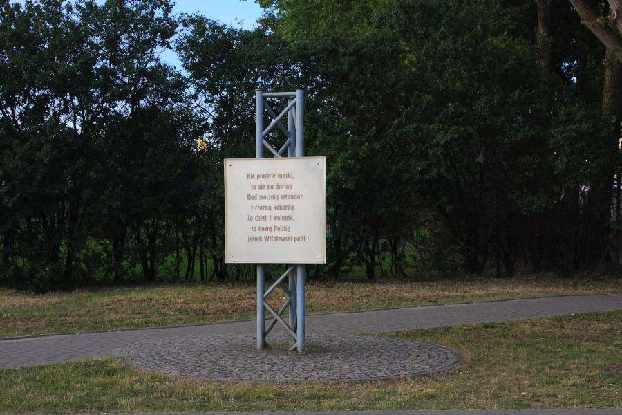 janek wiśniewski tablica w gdyni
