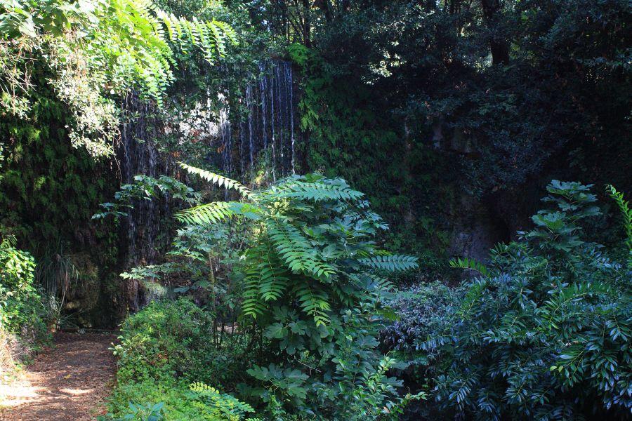 Caserta alejki w ogrodach