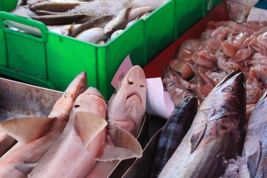 Marsaxlokk targ rybny