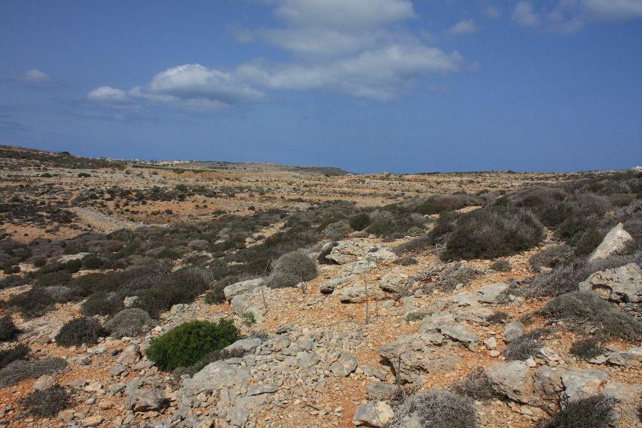 krajobraz Comino