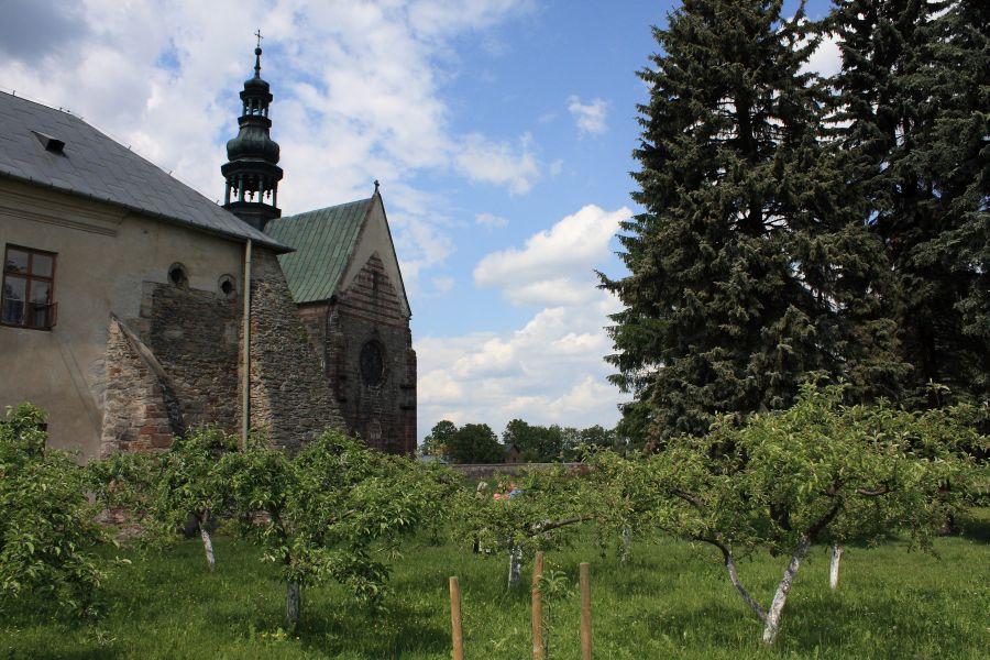 Wąchock ogrody klasztorne